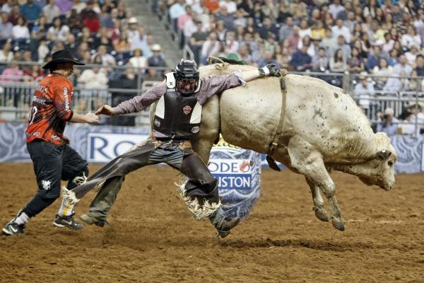 rodeo.results.cropped3.jpg3